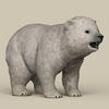 19 11 35 772 game ready polar bear cub 06 4
