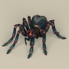 Game Ready Spider 3D Model
