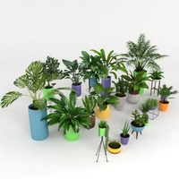 Plants collection 3D Model