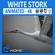Stork Animated 3D Model