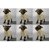 18 54 10 955 sheep015 4