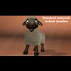 18 54 19 986 sheep014 4