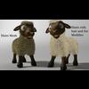 18 56 27 356 sheep002 4