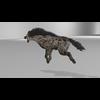 07 47 45 708 hyenapic4 4