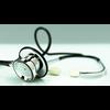 11 31 24 491 stethoscope4 4