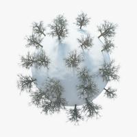 Winter Planet 04 3D Model
