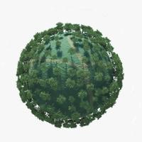 Planet Season Spring 3D Model