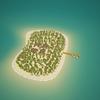 05 21 49 568 island scene 03 2 4