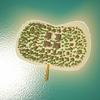 05 21 49 723 island scene 03 5 4