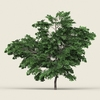 10 02 54 726 game ready forest tree 01 02 4