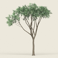 Game Ready Forest Tree 10 3D Model