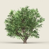 18 28 03 111 game ready forest tree 11 02 4