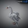 21 18 31 26 swan 10 4