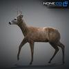 10 20 06 818 deer 10 4
