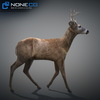 10 20 06 863 deer 11 4