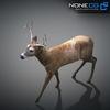10 20 07 378 deer 15 4