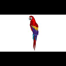 parrot figure 2 3D Model