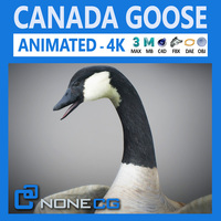 Animated Canada Goose 3D Model