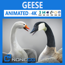 Animated Geese 3D Model