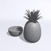 15 53 37 558 pineapple w2 4
