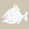 11 37 30 973 game ready fantasy fish 07 4
