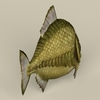 11 42 20 205 game ready monster fish 05 4