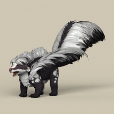 Game Ready Animal Skunk 3D Model