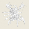 03 00 13 115 game ready monster spider 06 4