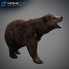 18 55 29 366 grizzlybear 008 4