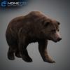 18 55 29 946 grizzlybear 006 4