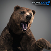 18 55 30 374 grizzlybear 003 4
