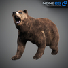 18 55 30 380 grizzlybear 005 4