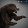 18 55 30 648 grizzlybear 010 4