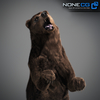 18 55 30 6 grizzlybear 004 4