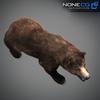 18 55 31 552 grizzlybear 013 4