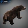 18 55 31 688 grizzlybear 017 4