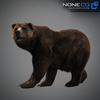 18 55 31 989 grizzlybear 015 4