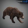 18 55 32 1 grizzlybear 018 4