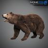 18 55 32 431 grizzlybear 012 4