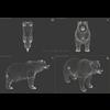 18 55 32 548 grizzlybear 021 4