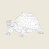 08 21 55 549 game ready tortoise 06 4