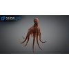 23 45 26 744 octopus 12 4