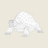 06 40 21 41 game ready mountain turtle 06 4