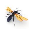09 03 45 426 tarantulahawk r5 4
