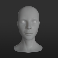 Female Head Base Mesh 3D Model