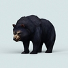 07 28 33 635 wild bear 01 4