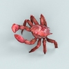 07 33 06 277 christmas island red crab 02 4