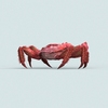 07 33 06 620 christmas island red crab 04 4