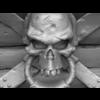 07 55 58 830 3d skull treasure wireframe zbrush 4