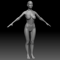 Female Basemesh ZTool 4R8 3D Model
